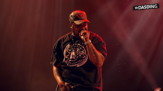 D12 - Live Openair Frauenfeld 2015 (Switzerland 11/07/15) by Niko Neithardt kuniva