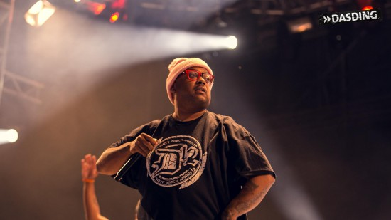 D12 - Live Openair Frauenfeld 2015 (Switzerland 11/07/15) by Niko Neithardt Bizarre
