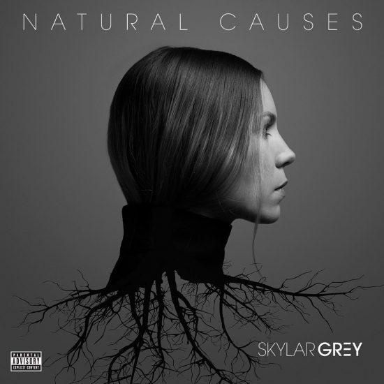 Skylar Grey анонсировала обложку и название своего нового альбома!