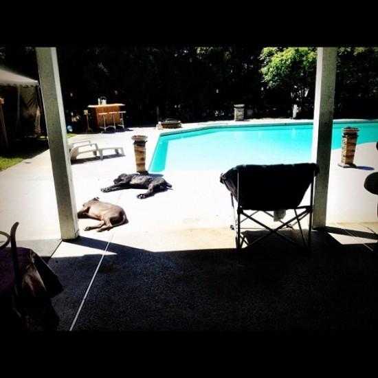 Joe Budden «Pool Party»— фотографии свечеринки (12 мая 2012)