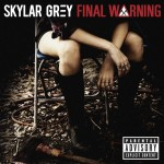 Skylar Grey Final Warning Cover
