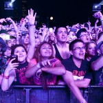 16 Stan'ов на Lollapalooza