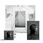«Natural Causes» постер + CD альбома «Natural Causes» с автографом Skylar Grey + футболка.