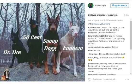 Snoop Dogg снова намекает на тур с Dr. Dre, Эминемом и Ламаром