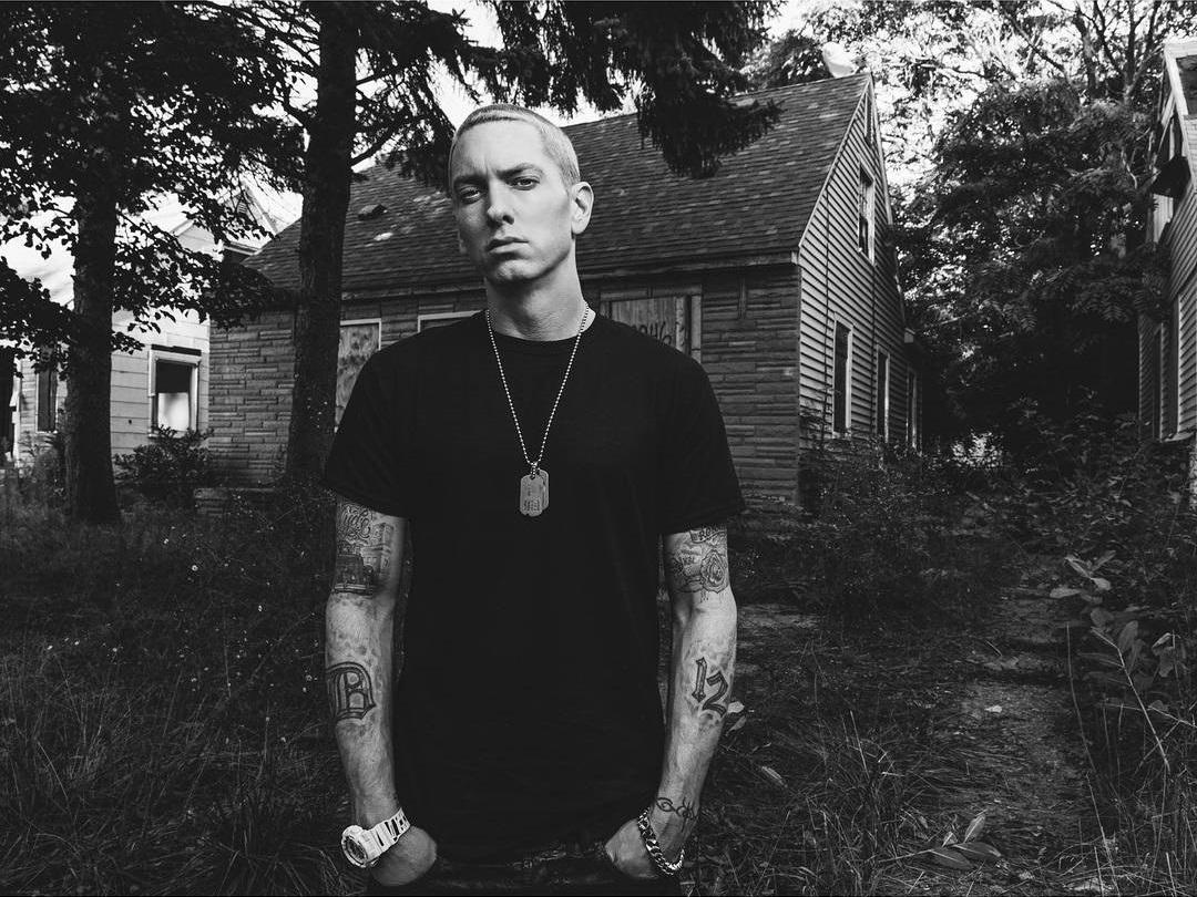 Eminem 2013