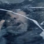 В треке «Arose» Eminem делает отсылки к первому треку альбома «Revival» - синглу «Walk on Water», используя строку «Feels like I'm underwater submerged like a submarine» («Чувствую себя как подводная лодка, погружающаяся в воду»).