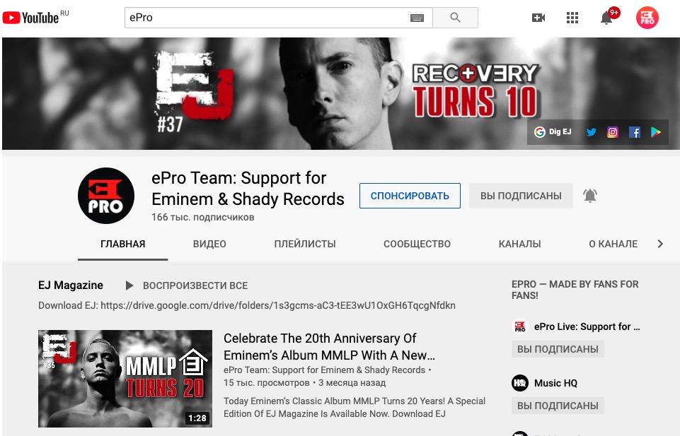 Поддержка проекта Eminem.Pro: Спонсорство